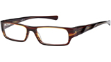 Kubni Unisex Brown and Gold Plastic Frame